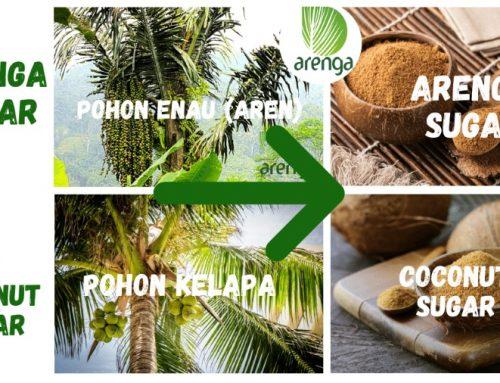 Arenga Sugar vs Coconut Sugar Beda di Mana