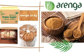 supplier gula aren bubuk dan cair untuk industri