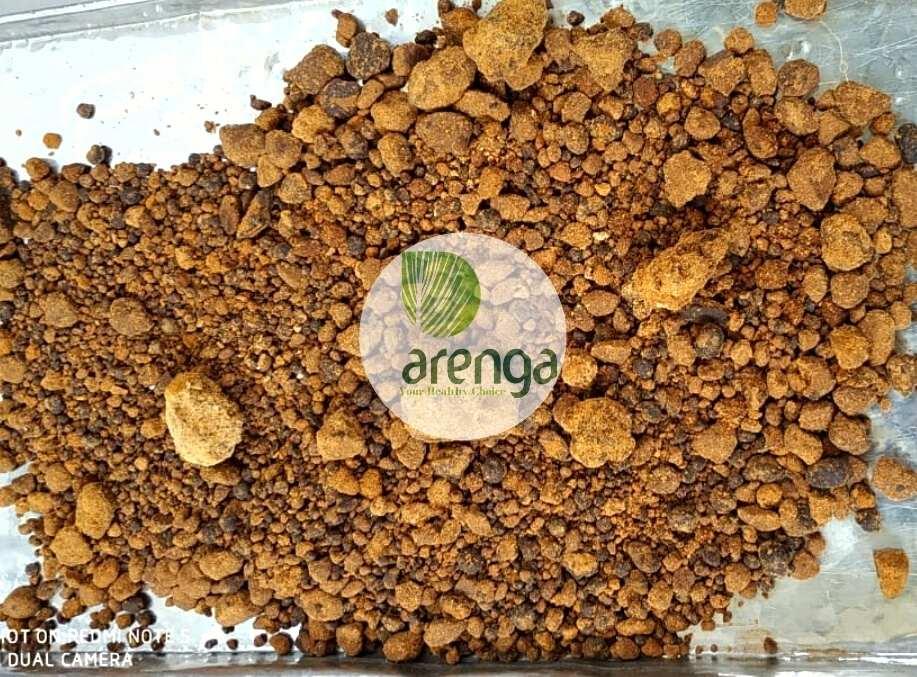 Arenga gula aren grindil untuk pempek